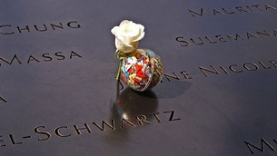 Cranes Visit Ground Zero