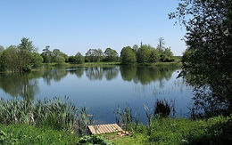 Harleston and Wortwell District Angling Club