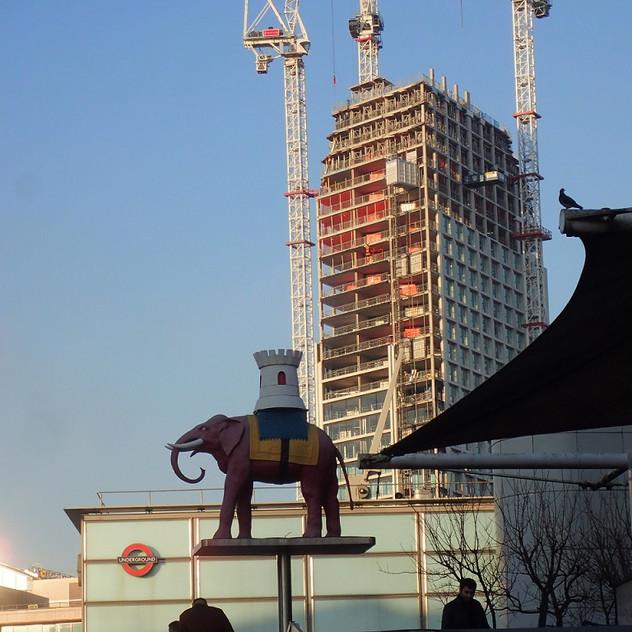 Elephant_centre