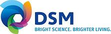 DSM logo.jpeg