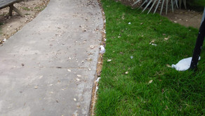 Pedestres  reclamam de acumulo de lixo em praça de Amargosa- BA