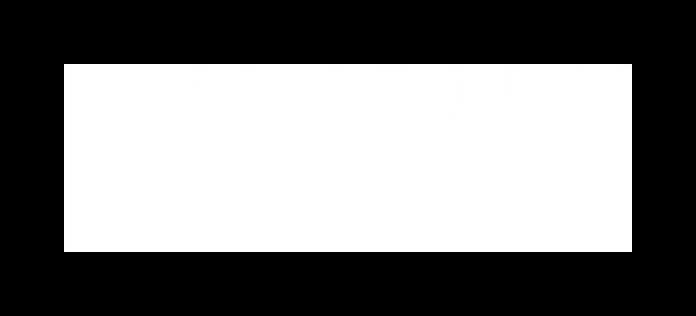 brandman_whitelogo