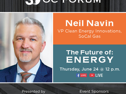 The Future of: Energy - Neil Navin Guest Panelist