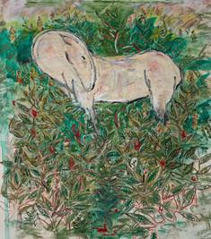 Animal Artist Muse