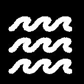 RIPC-icons-WHITE-04.png