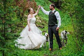 Having dogs at a wedding.jpg