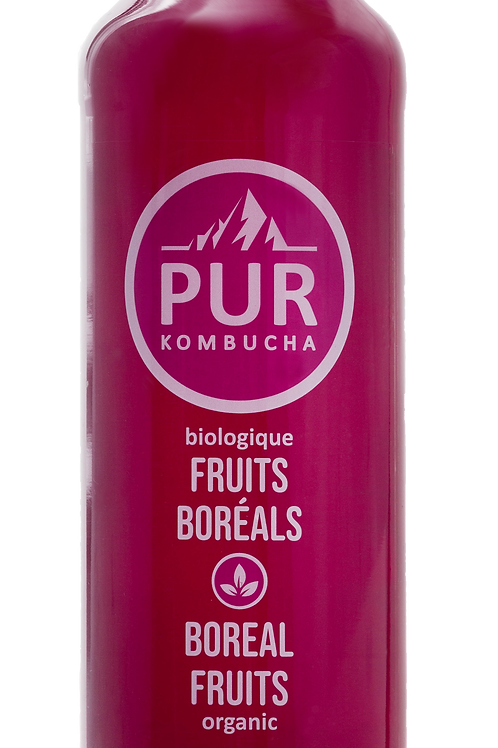 PUR Kombucha - Boreal Fruits