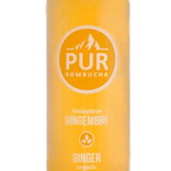 PUR Kombucha - Ginger