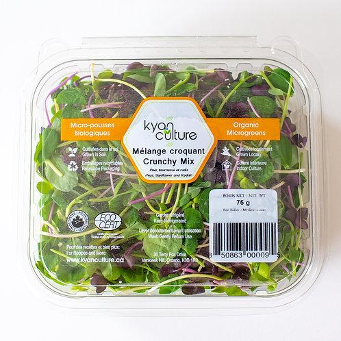 Microgreens - Crunchy Mix