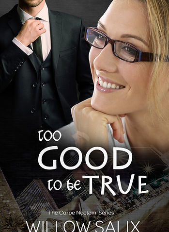 Too good to be true Amazon Cover (2).jpg