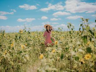 Sunflower Field Portrait Session – Sledd's U-Pick Farm – Mims, Florida