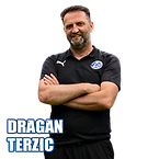 25_DRAGAN_TERZIC_STICKER.png