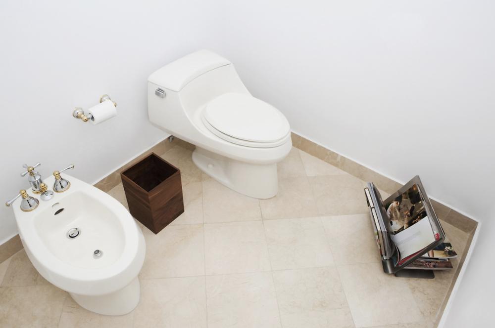 坐浴盆(BIDET)(左下)(視覺中國)