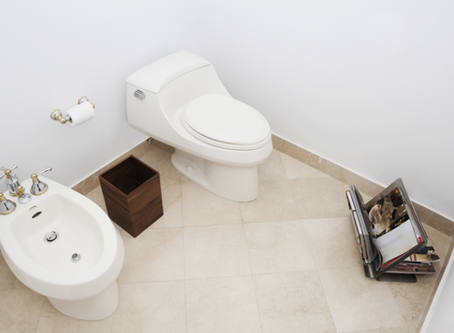 法國性文化:坐浴盆bidet的香艷用途