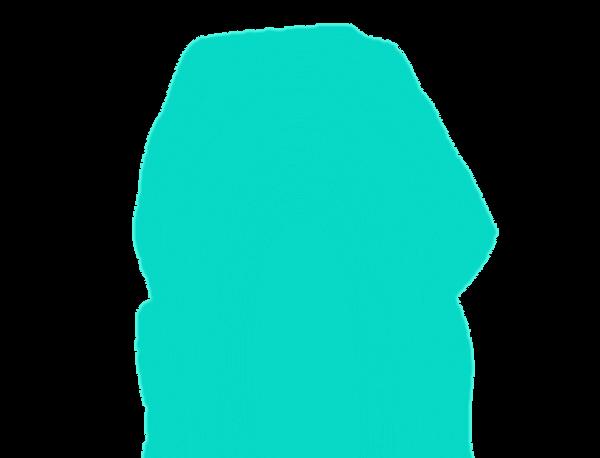 BIOQUÍMICA - Aulas on line Professor Dorival Ciclo de Krebs, Síntese de Ácidos Graxos, Cadeia Respiratória, Beta-Oxidação, Medicina, Veterinária, Nutriçãong
