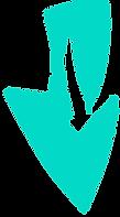 BIOQUÍMICA - Aulas on line Professor Dorival Ciclo de Krebs, Síntese de Ácidos Graxos, Cadeia Respiratória, Beta-Oxidação, Medicina, Veterinária, Nutrição