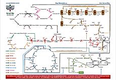 Vias Metabólicas bioquímica Professor Dorival