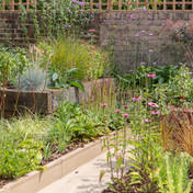 Vala Designs Gardens