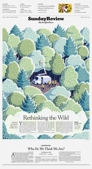 Rethinking the Wild