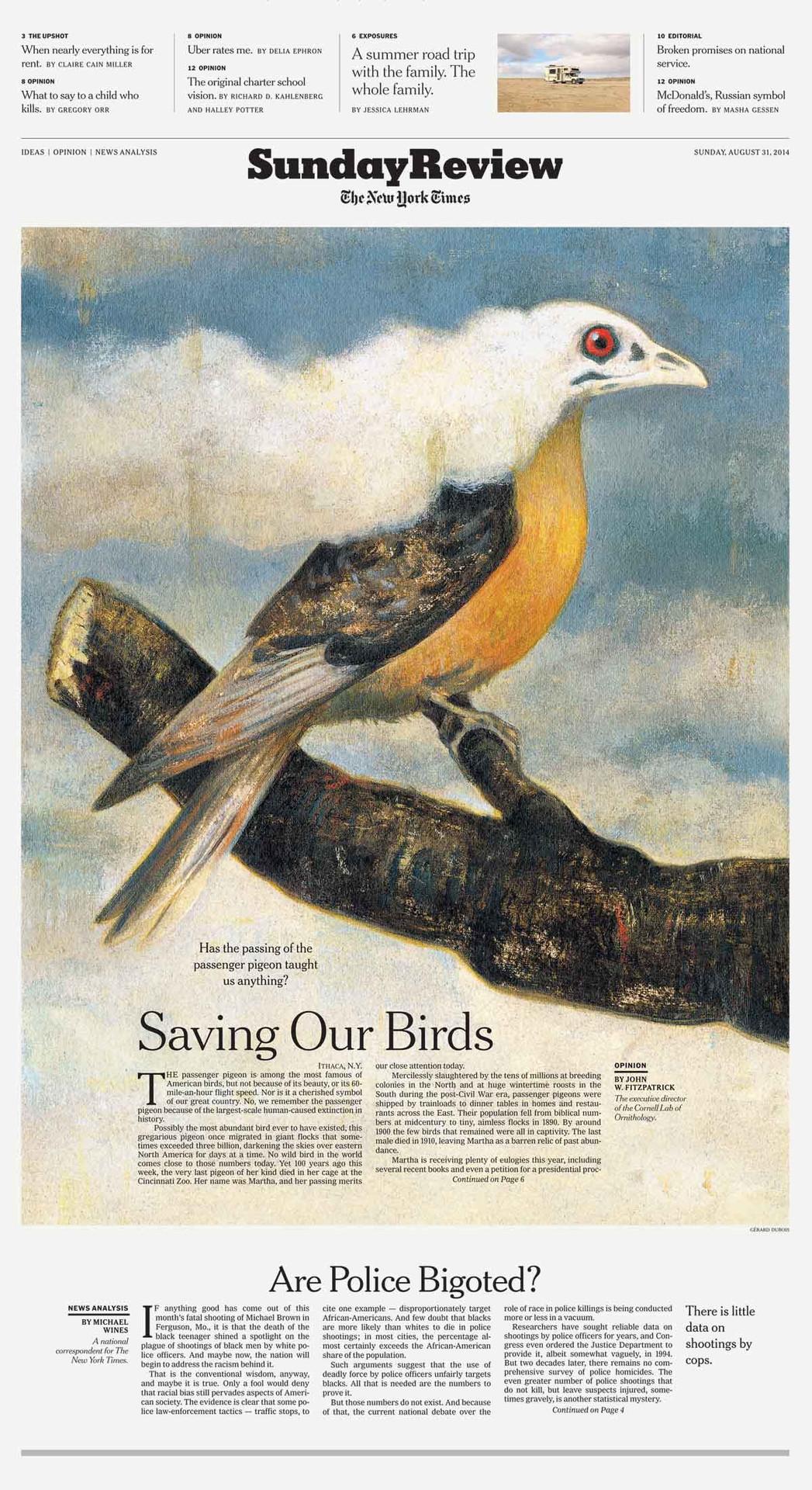 Saving Our Birds