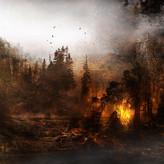 The Burning Woods