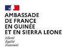 logoAmb-Guinée_Sierra Leone.png