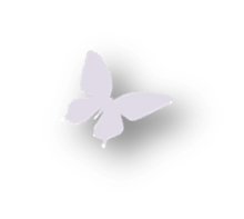 butterfly 5.png