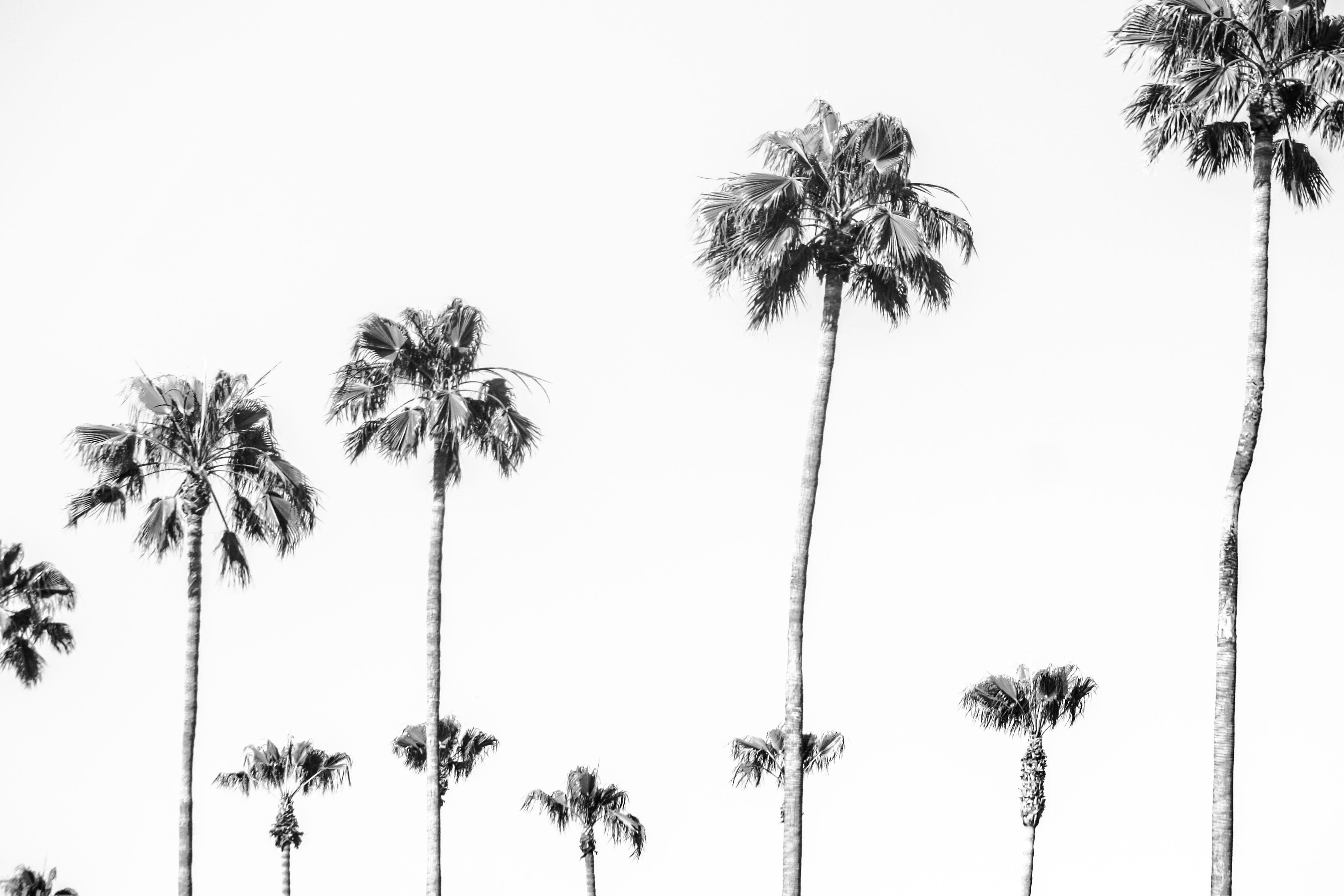 San Diego // California