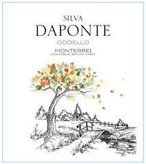 Silva DaPonte F.jpg