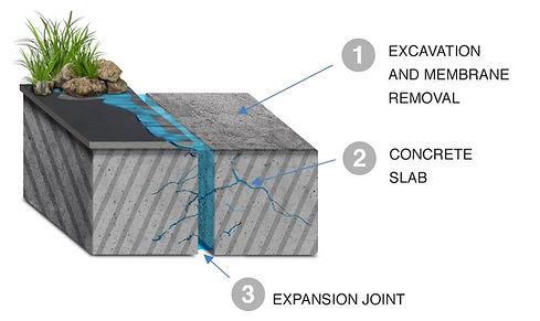 membrane_2.jpeg