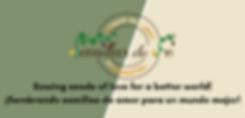 sdf_logo_website.png
