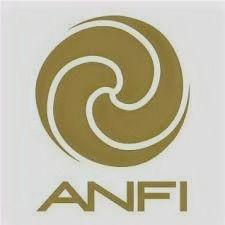 anfi%20_%20!_edited.jpg