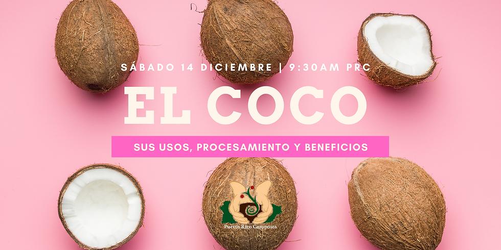El Coco, sus usos, procesamiento y beneficios