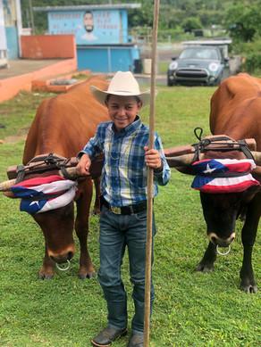 Con futuro esperanzador la agricultura y el arado de bueyes!