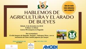 Hablemos de Agricultura y el arado de bueyes