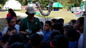 ¡Educando a los niños sobre el compostaje en tiempos de crisis!