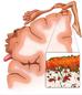 Comprendiendo el Proceso Inflamatorio