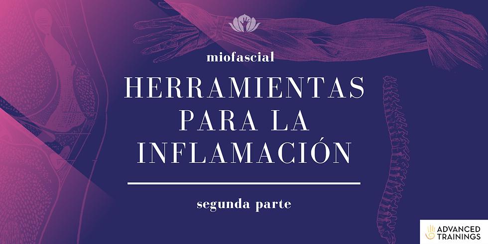 Herramientas para la Inflamación: Segunda parte
