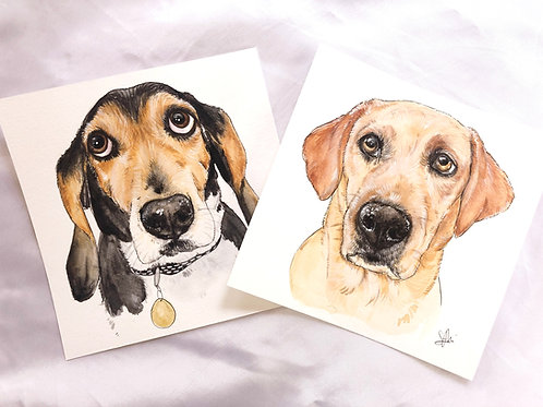 "6x6"" Custom Watercolor Pet Portrait"