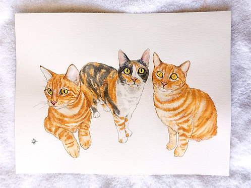 """12x16"""" Three or More Pets Portrait"""