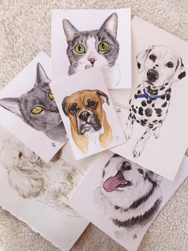 Assorted Portraits