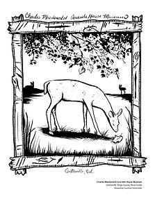 Charles Macdonald Deer Colouring Page.jp