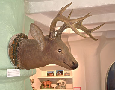 Cement trophy buck