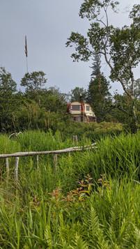 Blue Cottage\IMG_20200724_163109.jpg