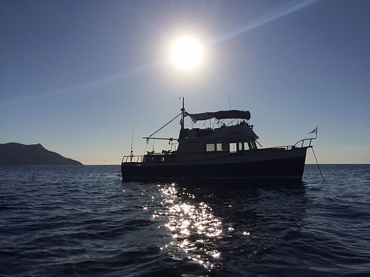 FISHING CHARTER SOLLER