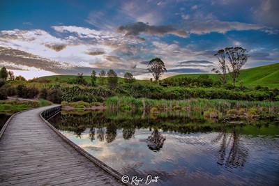 Peka Peka Wetland