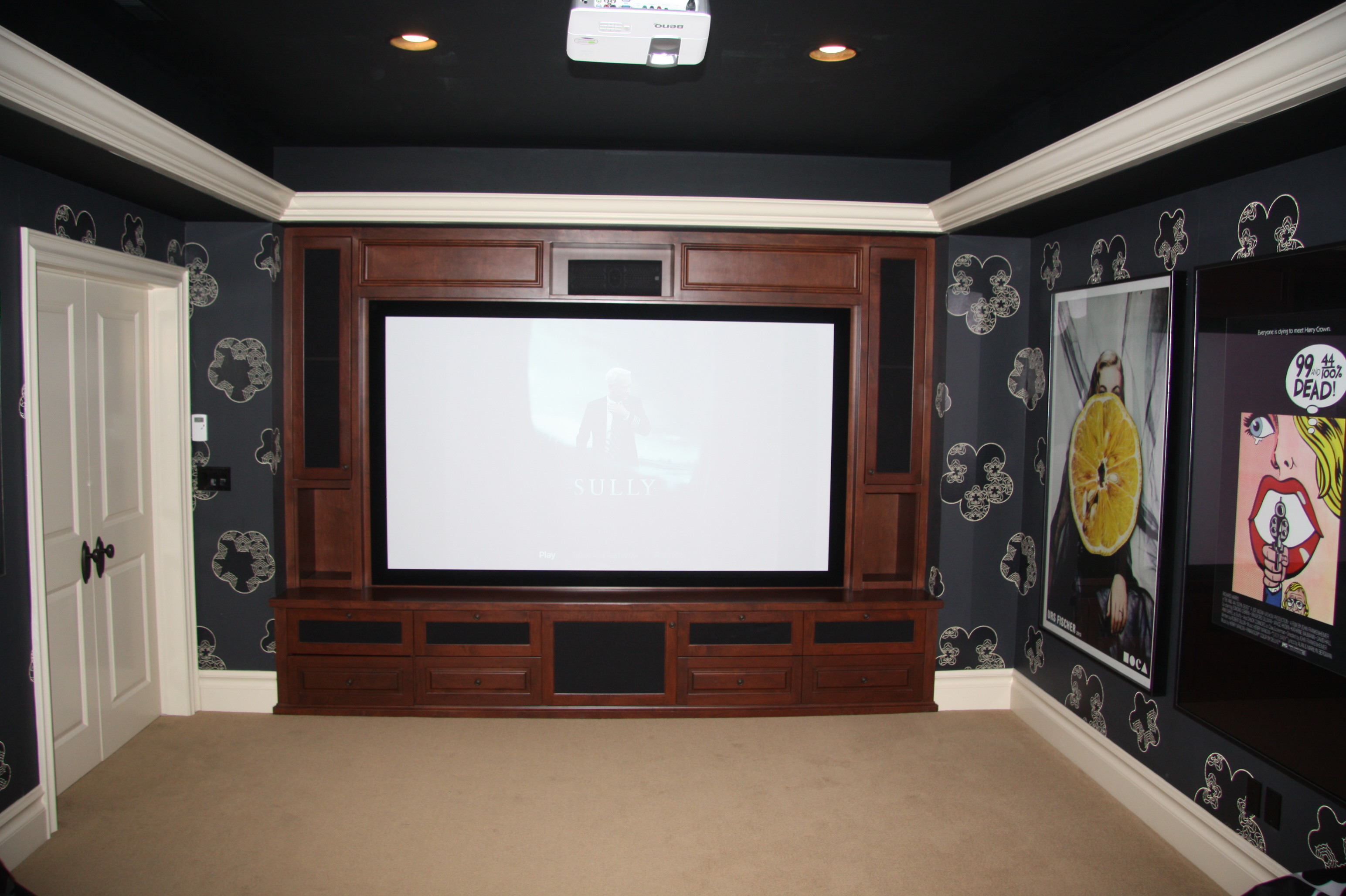 Project-Tek Home Theater_15