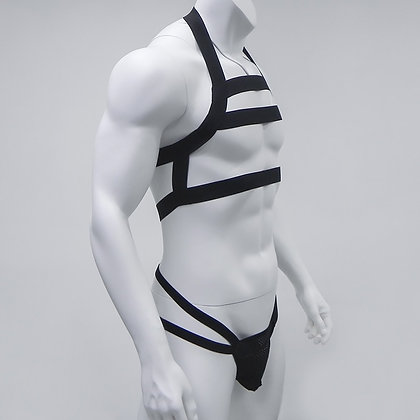Harness elastic straps set