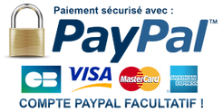 paypal_01_300x150.png