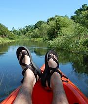 kayak, kayak tours,kayak sarasota, kayaking saraosta, kayaking tours, mangrove tunnels